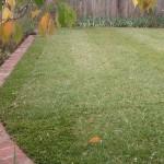 Landscaping-Melbourne